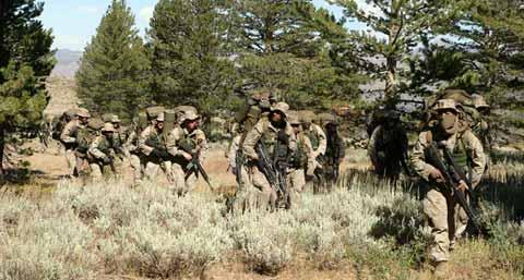 mountain warfare training center training at wood